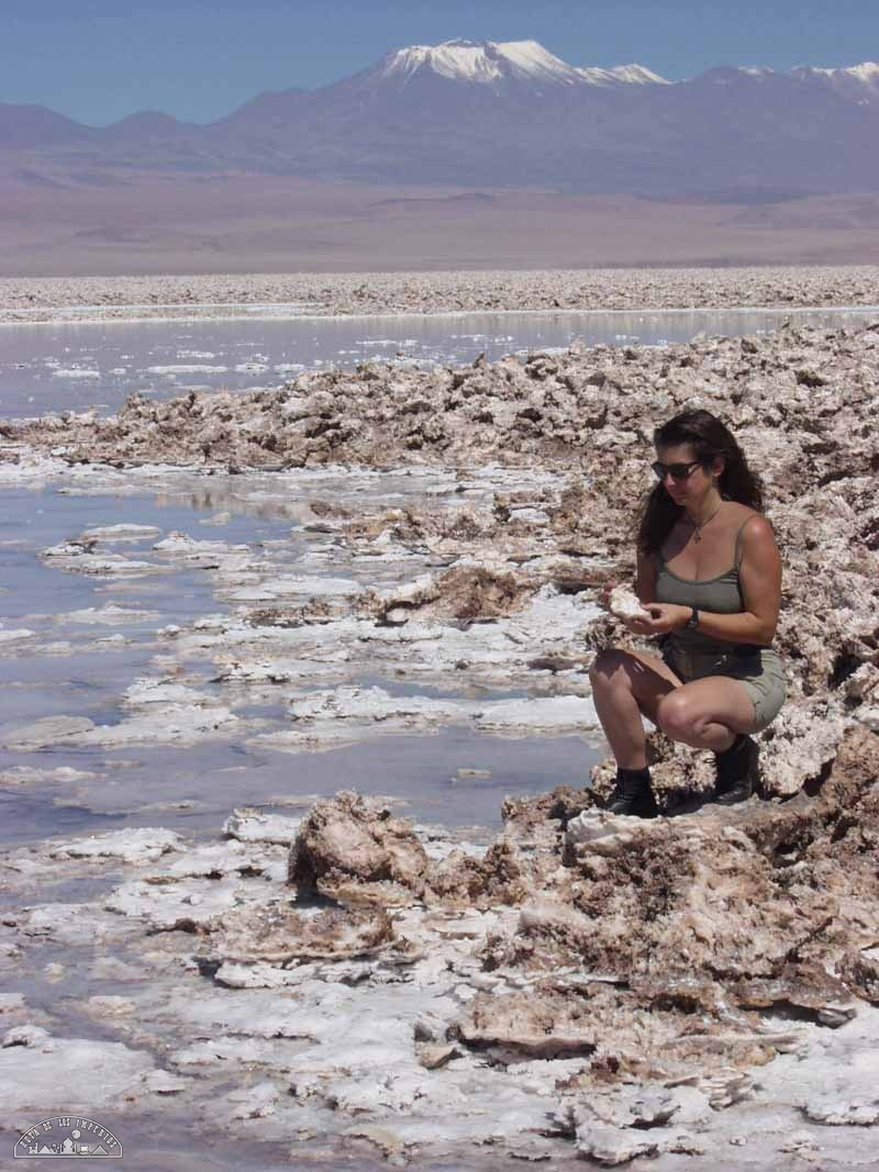 Chile Norte 2 - Bufidos de dragón